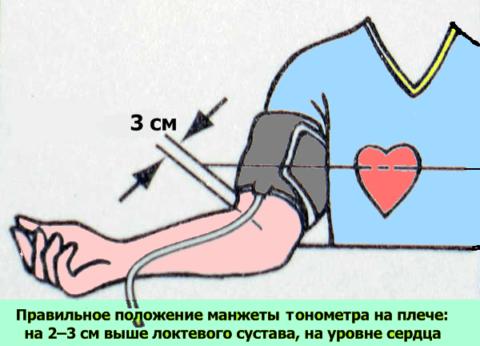 От правильной подготовки к использованию тонометра зависит точность результатов.