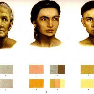 Обтурационная желтуха: Болезнь Жильбера. Классификация