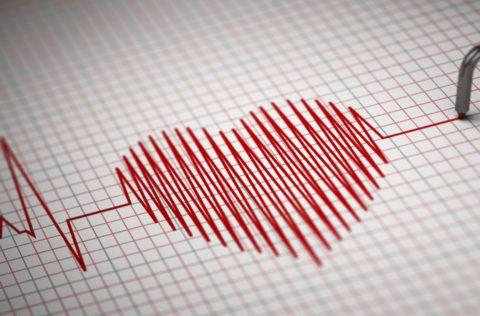 Нормальный сердечный ритм – залог здоровья всего организма человека.