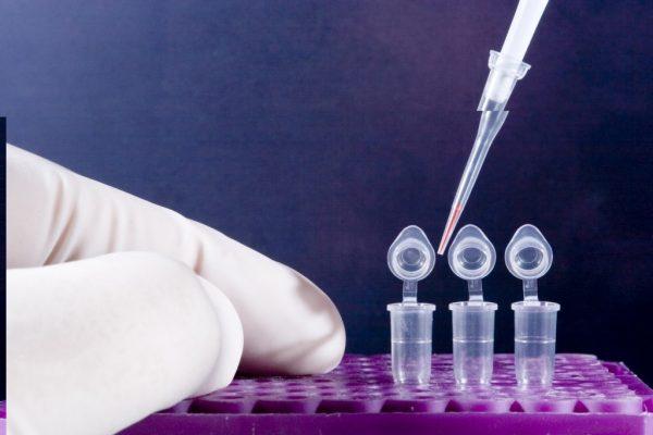 Особенности проведения анализа ПРЦ на гепатит С