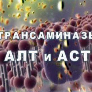 Выполнения АСТ и АЛТ при циррозе печени
