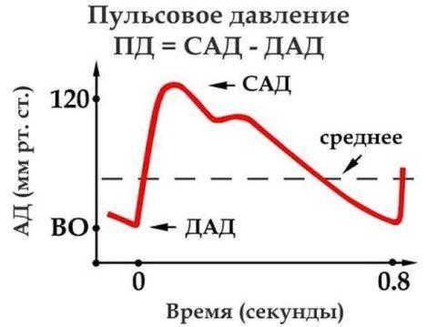 График и формула пульсового давления