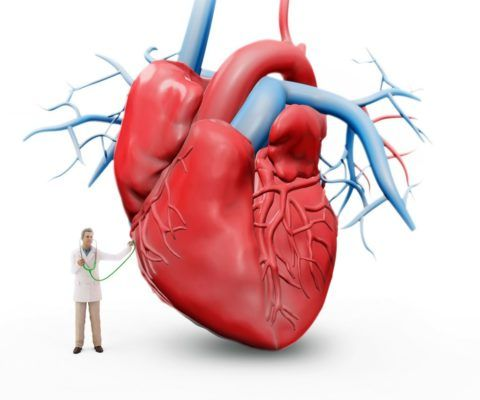 Нарушение желудочковой проводимости - разновидность сердечных аритмий