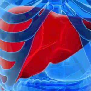 Особенности лечения гепатита С 3 генотипа