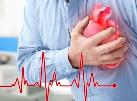 Скорость биения сердца