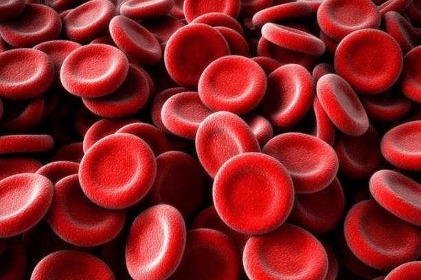 Незаменимый гемоглобин, народные методы лечения железодефицитной анемии