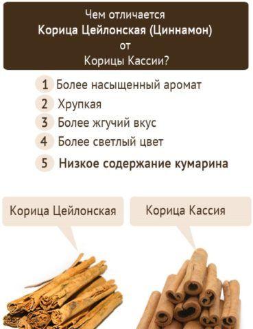 Отличия двух популярных видов корицы