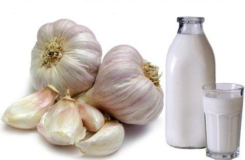 Молоко смягчает действие чеснока на ЖКТ