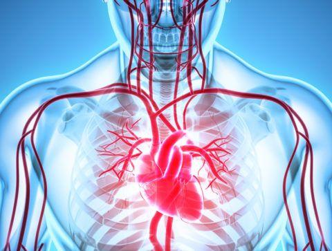 ИБС относится к самым распространенным заболеваниям сердечной системы