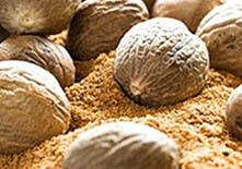Польза и вред мускатного ореха