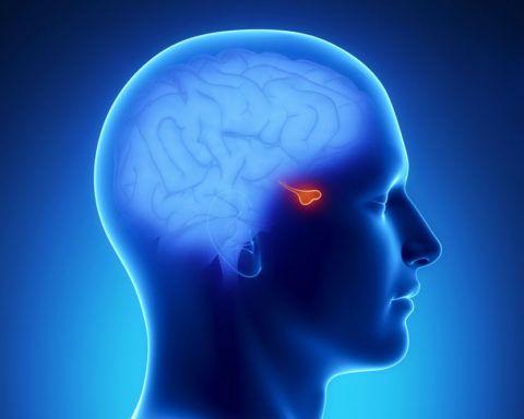 Доброкачественное новообразование в головном мозге