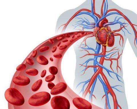 Медики выделяют 4 формы вторичной артериальной гипертензии