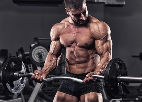 Силовые упражнения при длительных занятиях и больших нагрузках вызывают скорое изнашивает сердечной мускулатуры